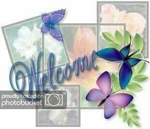 butterfly252520welcome.jpg